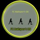 Vereinswappen: FC Ballsport